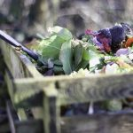 Handling Compost The Right Way